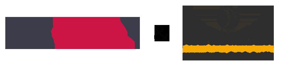 Banniere-logo-vidam-wiztopic-agence-mirada